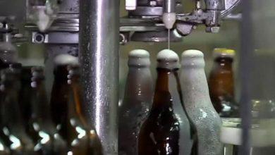 Photo of SAÚDE: Mortes por suspeita de consumo de cerveja contaminada chegam a seis