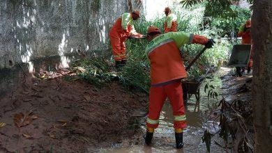 Photo of Desenvolvimento Sustentável intensifica limpeza de canais em Maceió
