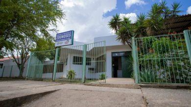 Photo of Unidade de Vigilância em Zoonoses ajuda no controle de doenças
