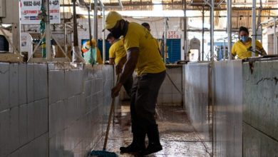 Photo of Prefeitura divulga cronograma de junho dos mutirões de limpeza nos mercados públicos