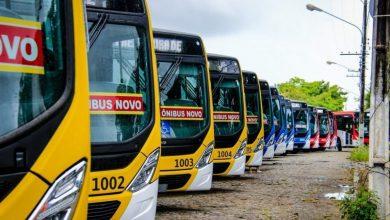 Photo of Ônibus: Linha 033 – José Tenório/Centro passará a atender Terminal da Rotary