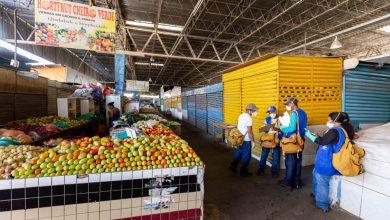 Photo of Mercado da Produção e feiras recebem serviços de desratização e dedetização